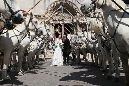 Photographe mariage - C.Jourdan photographe camargue - photo 19
